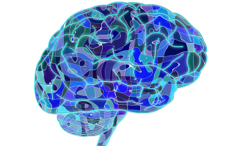 brain, brain fog, productivity, motivation