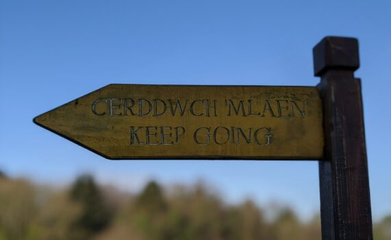 wooden sign post with the Welsh and English translation 'keep going' in focus at the front of the shot, behind is a blurred tree line and blue skies